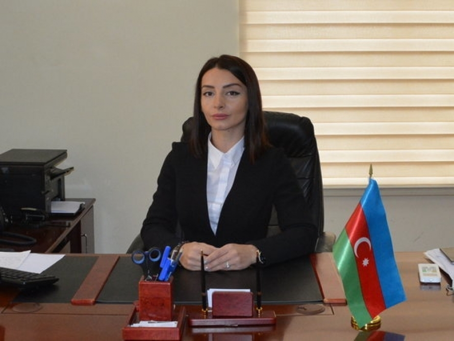 MFA: Pashinyan must understand - Karabakh conflict has nothing to do with CSTO